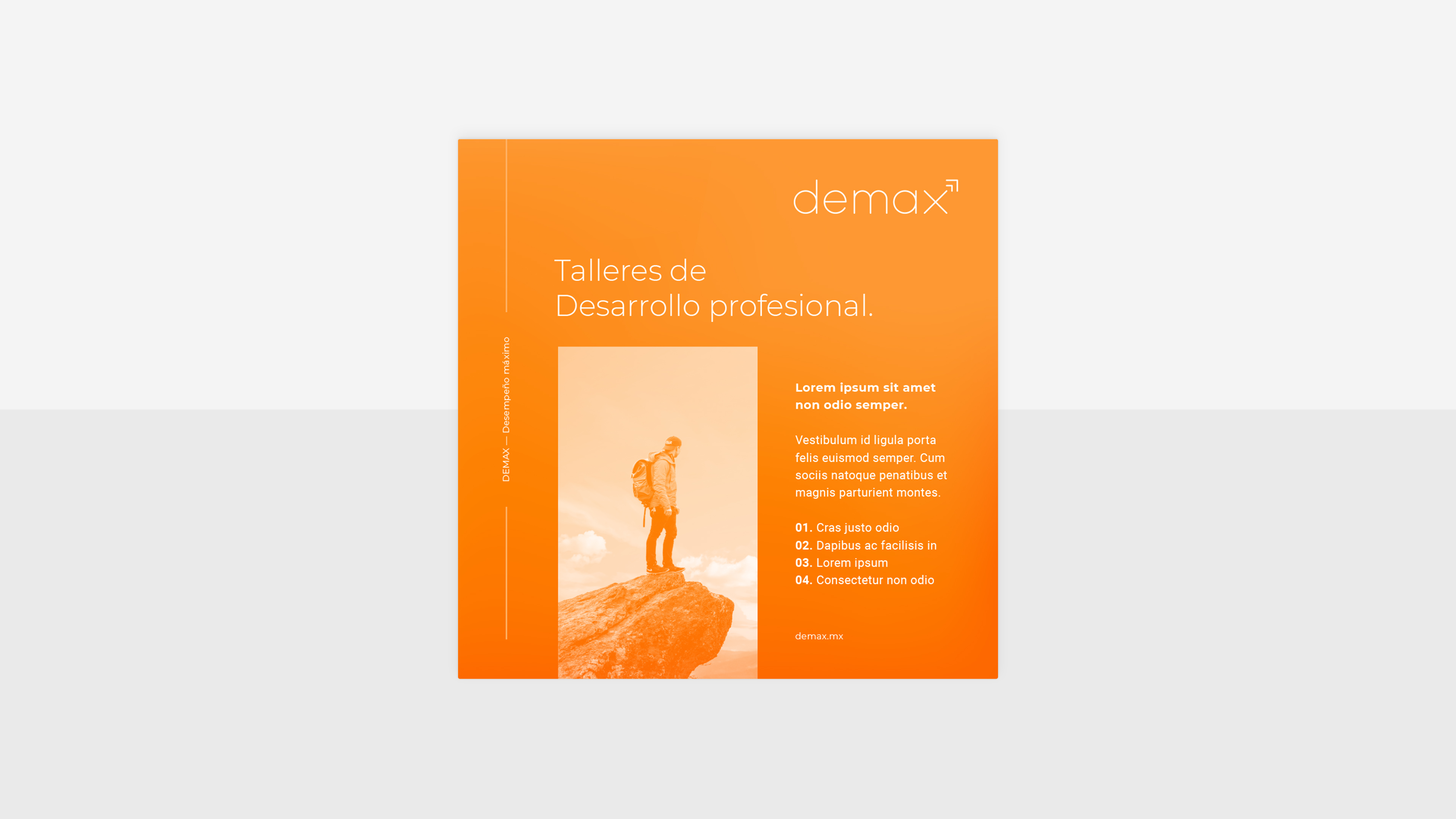 fmx_demax_07