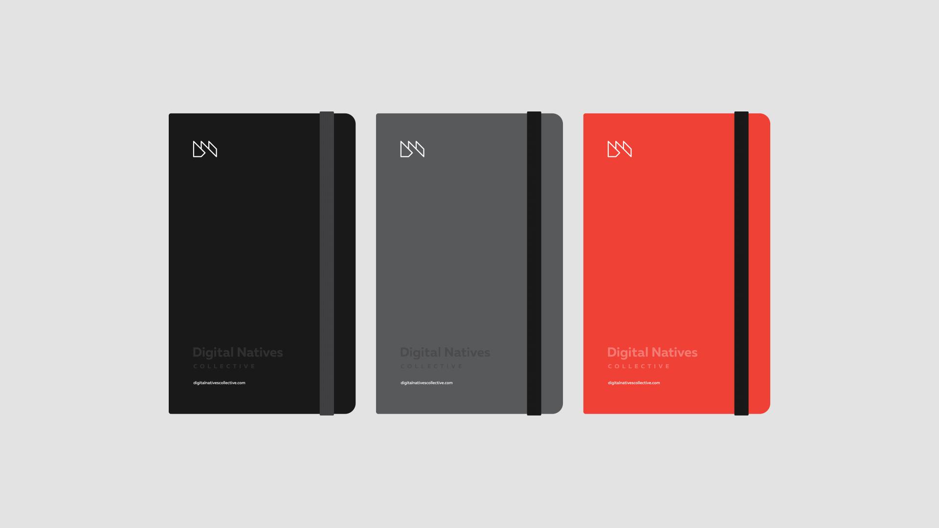 fmx_dnc_notebooks